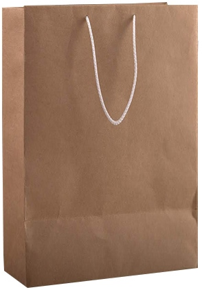 Craft Brown Bag